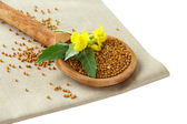 Mustard seeds in wooden spoon with mustard flower isolated on white — Stock Photo