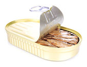 Open tin can with sardines, isolated on white — Stock Photo