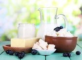 Productos lácteos frescos con arándanos sobre tabla de madera sobre fondo natural — Foto de Stock