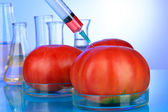 Injection into fresh red tomato on blue background — Stock Photo