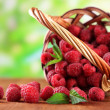 Ripe sweet raspberries in basket on wooden table, on green background — Stock Photo #30117763