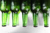 瓶啤酒,关闭 — 图库照片