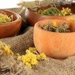 Medicinal Herbs in wooden bowls on bagging on table close-up — Stock Photo