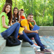Happy group of young students sitting in park — Stock Photo