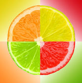 Multicolored pieces of lemon, orange, lime and grapefruit on color background — Stock Photo
