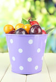 Ripe plums in pail on wooden table on natural background — Stock Photo