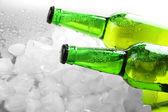 アイス キューブとビールのボトルをクローズ アップ — ストック写真