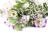 Bouquet of eustoma flowers isolated on white — Stock Photo