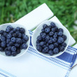 Blueberries in plates on napkin on wooden table on grass background — Stock Photo