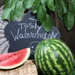 Ripe watermelon on grass near fence — Stock Photo #30313713