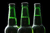 Bottles of beer on black background — Foto de Stock