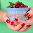 Stock Photo: Womhands holding bowl of ripe red cranberries, close u