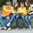 Happy group of young students sitting in park — Stock Photo #30360083