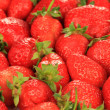 Fresh strawberry close up — Stock Photo #30402859