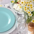 Table setting with chamomiles on checkered tablecloth — Stock Photo #30411715