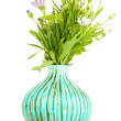 Bouquet of beautiful summer flowers in color vase, isolated on white — Stock Photo #30412895