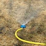 sprinkler drenken het gazon in tuin — Stockfoto