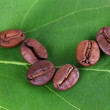Coffee grains on green leaf close-up — Stock Photo