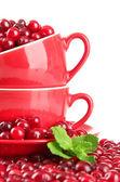 成熟红色小红莓的杯子,隔绝对惠特 — 图库照片