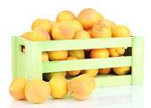 新鲜天然杏的木箱上白色隔离 — 图库照片