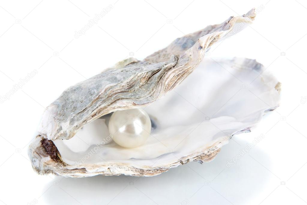 Open oyster with pearl isolated on white — Stock Photo © belchonock ... Open Oyster Shell With Pearl