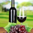 Ripe grapes, bottle and glass of wine on bright background — Stock Photo