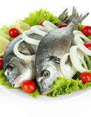 Dorado fish isolated on white — Stock Photo