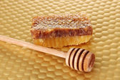 Honey comb and honey on bright yellow background — Stock Photo