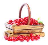 Fresh cornel berries in wooden basket, isolated on white — Stock Photo
