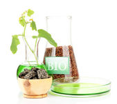 Conceptual photo of bio fuel. Isolated on white — Stock Photo