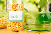 Conceptual photo of bio fuel. On bright background — Stock Photo
