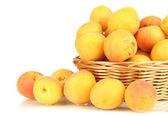 新鲜天然杏的柳条篮上白色隔离 — 图库照片