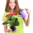 Beautiful girl with flower in pot isolated on white — Stock Photo