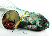 Fishes in fishing net isolated on white — Stok fotoğraf
