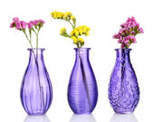 Beautiful summer flowers in vases isolated on white — Zdjęcie stockowe