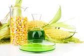 Fotografía conceptual de bio combustible de maíz. aislado en blanco — Foto de Stock