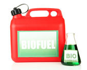 Bio fuels in canister and vial isolated on white — Stock Photo
