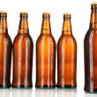 Beer bottles isolated on white — Photo