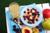 Plaka tablo çim zemin üzerine peçete üzerinde meyveleri ile yulaf ezmesi — Stok fotoğraf