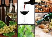 Collage of wine compositions — Stock Photo