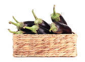 Fresh eggplants in wicker basket isolated on white — Stock Photo