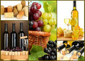 Collage of wine compositions and grapes — Stock Photo
