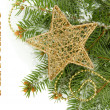 Christmas star on fir tree with snow, isolated on white — Stock Photo #30883551