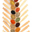 Assortment of spices in wooden spoons, isolated on white — Stock Photo