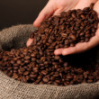 Coffee beans in hands on dark background — Stock Photo #31012527