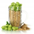 Glass of fresh green hops and barley, isolated on white — Stock Photo #31014691
