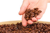 Coffee beans in hand isolated on white — Stock Photo