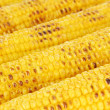 Delicious golden grilled corn close-up — Stock Photo #31022335