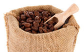 Coffee beans in sack isolated on white — Stock Photo