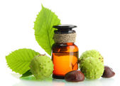 Medicine bottle with chestnuts and leaves, isolated on white — Stock Photo